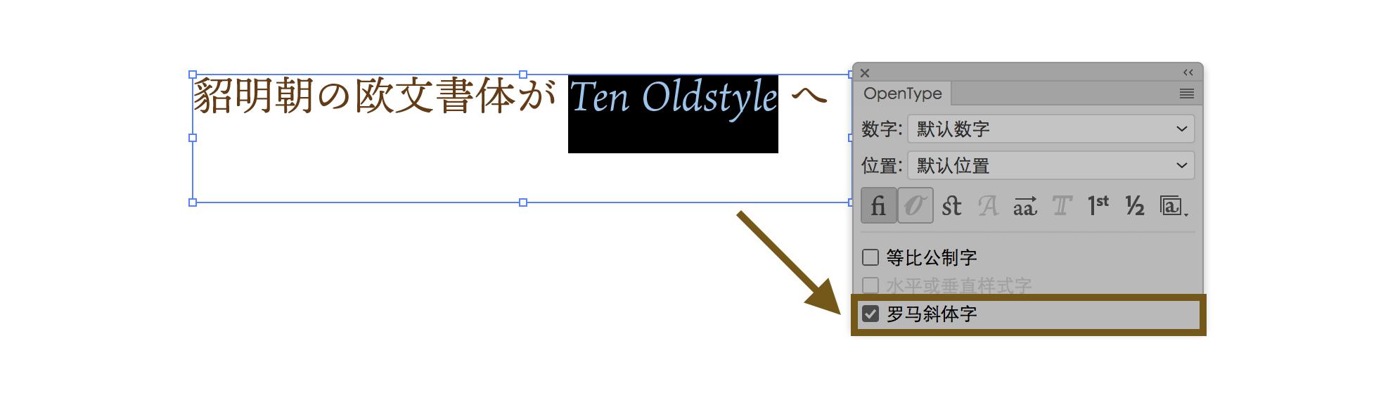 OpenType Italic