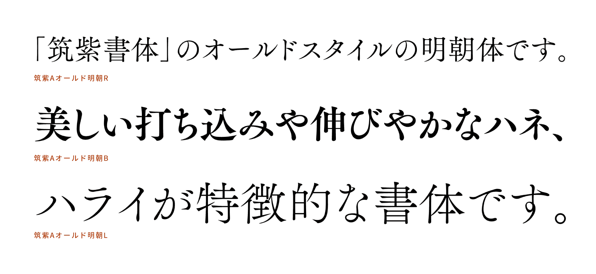 Tsukushi-Mincho